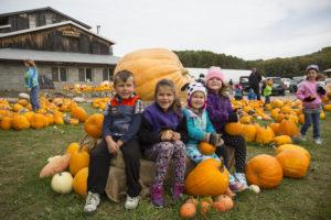 happy children sitting on big pumpkins at pond hill farm