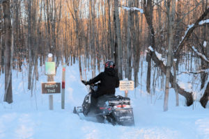 snowmobiler heading into the woods